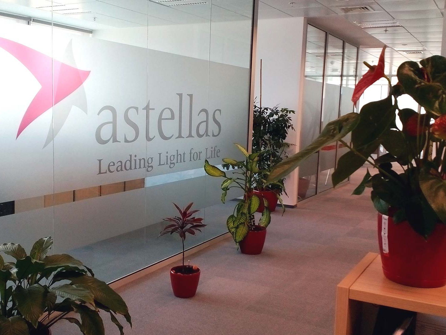 Glass walls frosted and decorated with the astellas logo